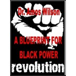 A Blueprint for Black Power