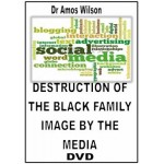Destruction of the Black Family By White Media